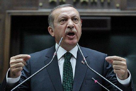 Турецкий диктатор отбыл с официальным визитом в Украину